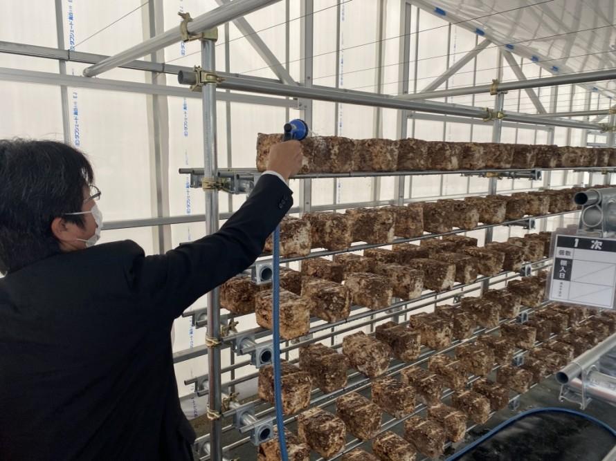 ソーラーシェアリング 飯田市 菌床シイタケ リックス 営農型太陽光